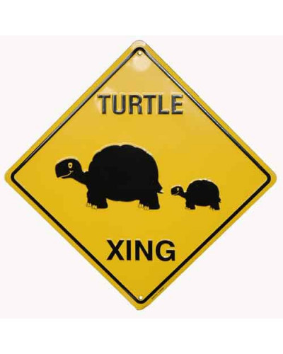 Turtles crossing