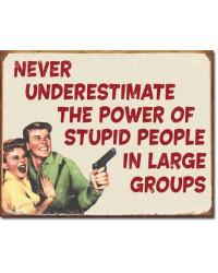 Plechová cedule Ephemera - Stupid People 32 cm x 40 cm