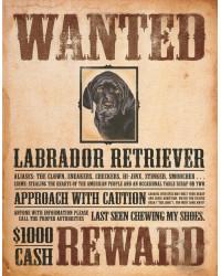 Plechová cedule Black Lab - Wanted Poster 32 cm x 40 cm