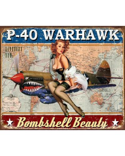 Plechová cedule P-40...